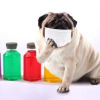 896a6f9874053c6b8952428eb6759517 t 200x200 - 呼び出しは突然に!咳の時の〇〇は厳禁!!